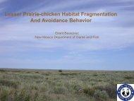 Lesser Prairie-chicken Habitat Fragmentation And Avoidance ...