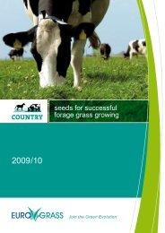 English - Euro Grass