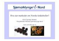 Hva sier markedet om Norske kråkeboller? - BluePlanet AS