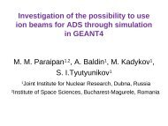 Investigation of the possibility to use ion beams for ADS through ...