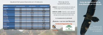 Ficha de indentificación de quebrantahuesos 2012 en pdf