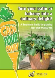 Growing your own Fruit & Veg - Haskins