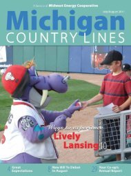 Midwest - Michigan Country Lines Magazine