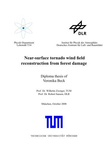 Near-surface tornado wind field reconstruction from forest damage