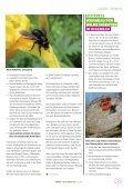 Gemeindemagazin - Die Grünen - Seite 5