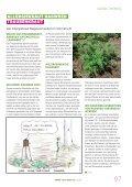 Gemeindemagazin - Die Grünen - Seite 7