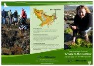 Brosjyre om fjørevandring - Runde Miljøsenter