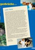 Heft 4/2007 - Pro Tier - Page 5