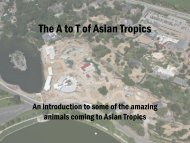 The A to T of Asian Tropics - Denver Zoo