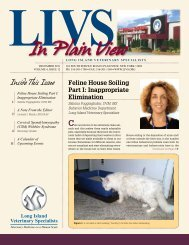 December 2011 Newsletter - Long Island Veterinary Specialists