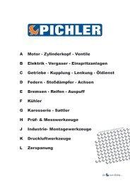 Pichler Werkzeug - Hauptkatalog - Pichler Tools