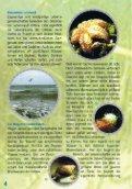 herunterladen - Baltic Green Belt - Seite 4