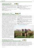 rAntGroen 48 - Natuurpunt Zuidrand Antwerpen - Page 6