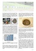 Bleiabtrennung aus Kugelfängen mittels Sensortechnologie ... - umtec - Seite 2
