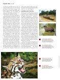 Der Dschungel riecht nach Wildschwein und die ... - Blue Hill Escape - Seite 5