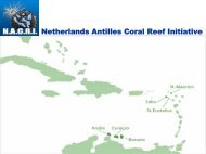 Netherlands Antilles Coral Reef Initiative