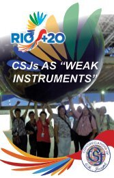 """CSJs AS """"WEAK INSTRUMENTS"""" - U.S. Federation of Sisters of St ..."""