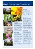 Flyer Honig (PDF) - Seite 2