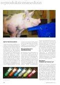 Der Weg nach vorn - Minitube International - Seite 3