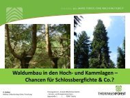 Waldumbau in den Hoch- und Kammlagen – Chancen für ...