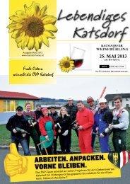 März 2013 (pdf) - oevp katsdorf