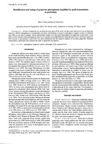Identification and typing of grapevine phytoplasma ... - Vitis-vea