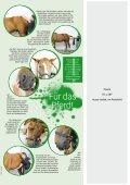Rheinlands Reiter-Pferde - Martina Rosenhagen - Page 6