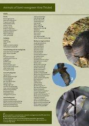 Fauna List (PDF 1.3 MB)