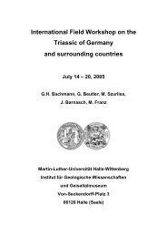 International Field Workshop on the Triassic of Germany - Deutsche ...