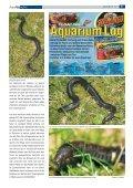 news72 deutsch.qxd - Tropenparadies - Page 2