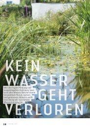 Artikel Wasser im Garten Bioterra Heft März 2013 - Salamander