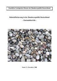 Rohstoffsicherung in der Bundesrepublik Deutschland ... - InfoGEO.de