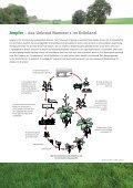 Erfolgreiches Grünland-Management (PDF) - DuPont - Seite 3