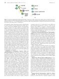 Sequence-Derived Three-Dimensional Pharmacophore Models for ... - Page 4