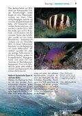 weiterlesen - Taucher Revue - Page 6