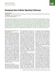 Designing New Cellular Signaling Pathways