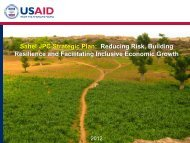 Sahel JPC Strategic Plan - Food Security Clusters
