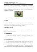 Produção de Frango de Corte - CEUNES - Universidade Federal do ... - Page 7