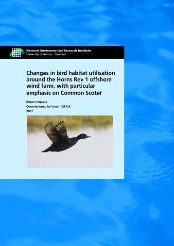 Changes in bird habitat utilisation around the Horns Rev ... - Vattenfall