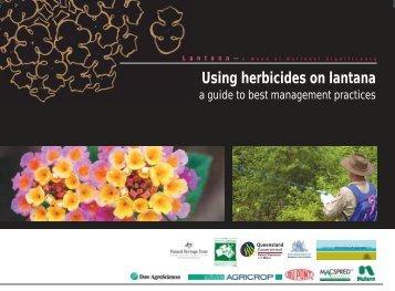 Using herbicides on lantana - Weeds Australia