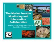 The Marine Invader Monitoring and Information ... - Maine Sea Grant