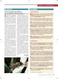 Le api italiane cercano tutela - Unaapi - Page 3