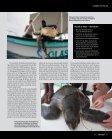 pWISSENSCHAFT - Reisereportagen-Kelm - Seite 4