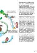 Az akvárium - Page 3