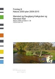 Forslag til Natura 2000-plan 2009-2015 Mønsted og ... - Naturstyrelsen