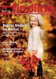 Buntes Treiben im Herbst – - Findling Heideregion