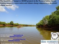 Assessing the feasibility of REDD+ for the mangrove forests of ...