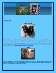 Happy Tails - Rescue Dogs Rock