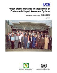 African Experts Workshop on Effectiveness of Environmental Impact ...