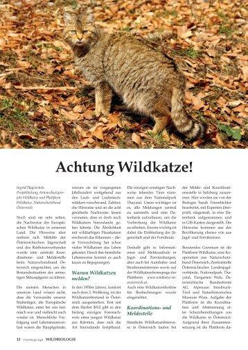 Achtung Wildkatze! - Vorarlberger Jägerschaft